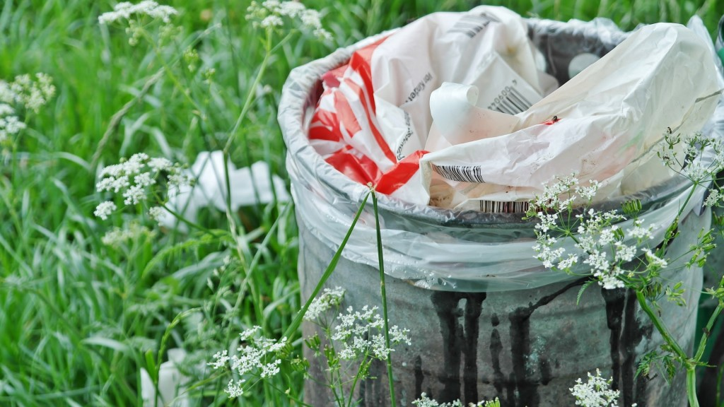 Recycling Tips: Back to Basics